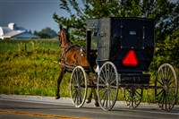 Springtime in Amish Country