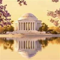 Washington DC & Cherry Blossom Festival - QC DEP