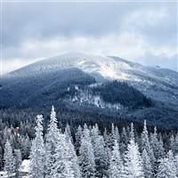 Smoky Mountain Christmas