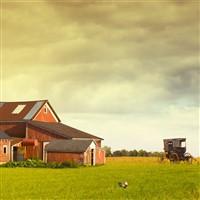 Amish Immersion in Indiana, Ohio & Pennsylvania